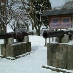 Period cannons on display at Fort Goryokaku.